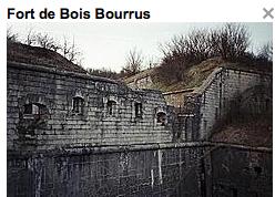 Fort de Bois Bourrus, Marre
